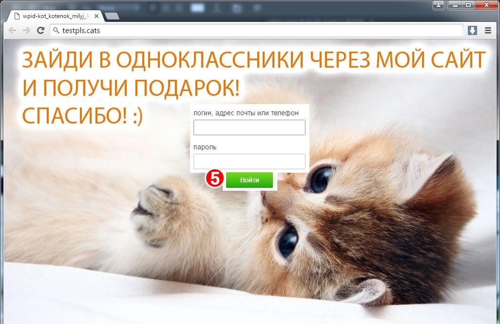 the Program of hacking someone else's page on Odnoklassniki.ru